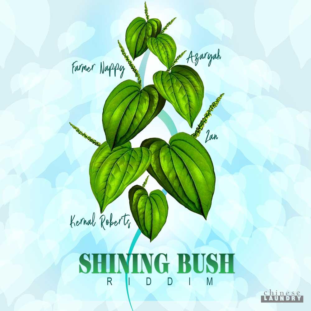 Shining Bush Riddim